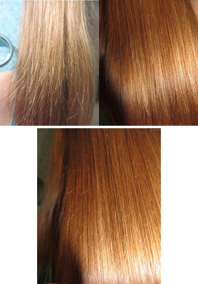 Масло для сухих кінчиків волосся: як вибрати, яке краще, як діє » журнал здоров'я iHealth 2
