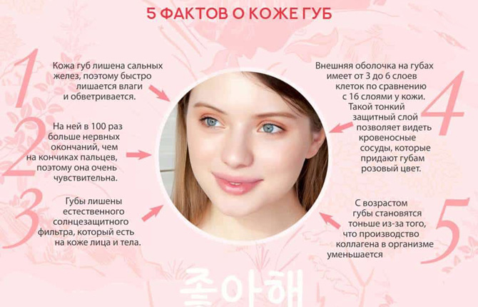 Факты о коже губ